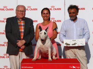 07_27ECM_Terriers_Portugal
