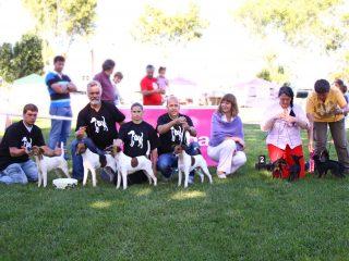 22ECM_Terriers_Criador